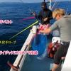 タックルの落水防止対策(実釣時)
